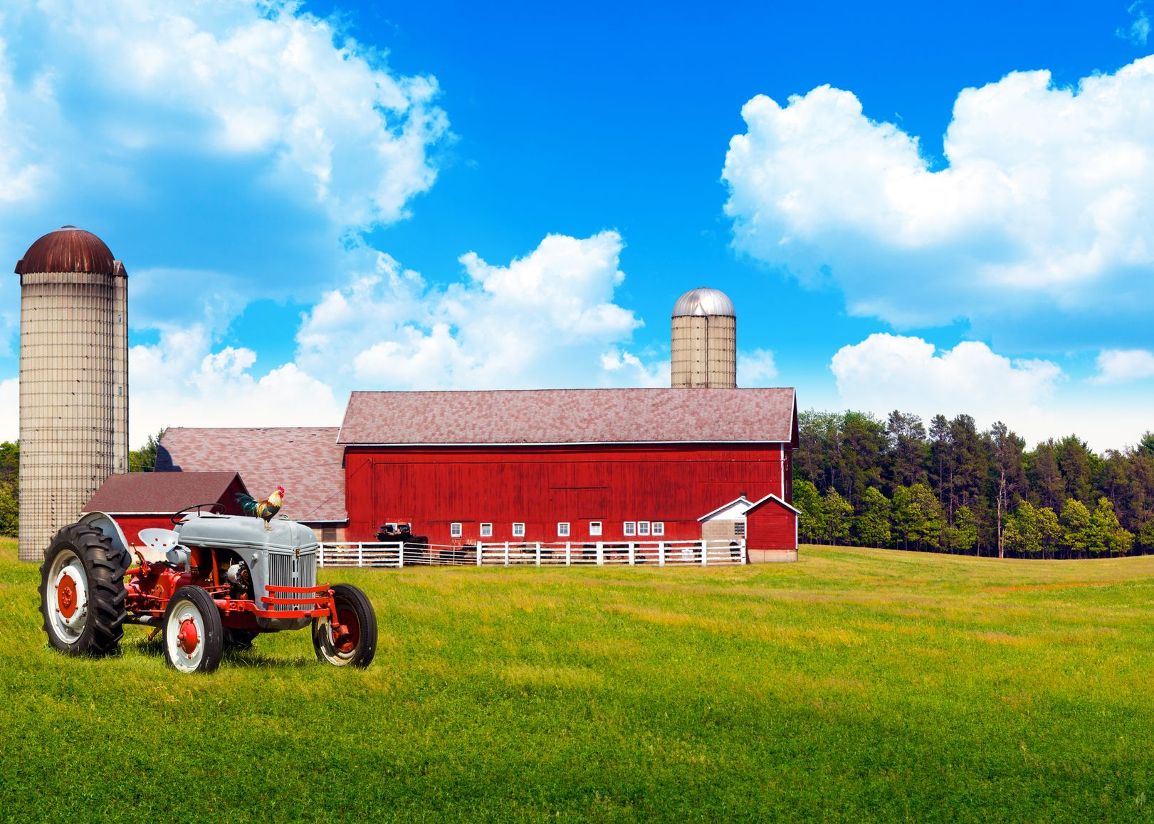 San Diego, CA. Farm & Ranch Insurance